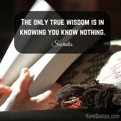 The only true wisdom is in knowing you know nothing Quote