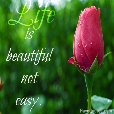 Life Is Not Easy Quotes Alluring Life Is Beautiful Not Easy Quote  Life Quotes Love Quotes Funny